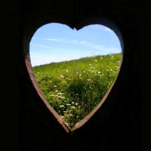 love-of-nature-jpg